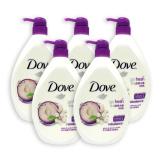Pack Of 5 Dove Body Wash Rebalance W Plum Sakura Scent 1000Ml 4525 On Singapore