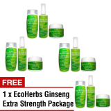 Best Rated Ecoherbs Ginseng Extra Strength Set Value Savings For Hair Growth Hair Regrowth Grow Hair Thick Hair Thicker Hair Hair Loss Hair Thinning Treatment For Beginning Serious Critical Hair Loss Or Near Bald 100 Herbal Based