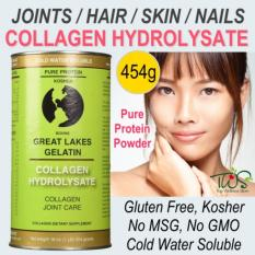 Sale Great Lakes Gelatin Co Collagen Hydrolysate Beef 454G Singapore
