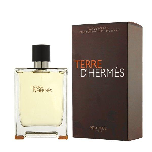 Buy Hermes Terre DHermes EDT 100ml Singapore