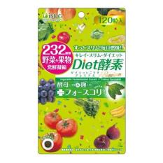 Wholesale Isdg Diet Enzymes 120 Tablets Bag