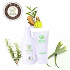 Limited Offer! Wowo Pure Ginger Anti Hair Loss Shampoo Conditioner Mask Treatment Set By Genconnect.