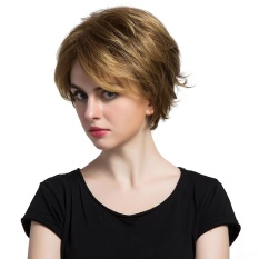 Who Sells The Cheapest Natural Light Brown Straight Short Hair Wigs Short Women S Fashion Syntheic Wig Intl Online