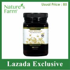 Buy Nature S Farm Manuka Honey 10 500G Nature S Farm Original