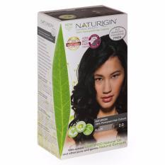 NATURIGIN (2.0 BLACK) 100% Permanent Organic Hair Colour