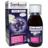 Buy Sambucol Black Elderberry Immune System Support For Kids Syrup 4 Fl Oz 120 Ml Sambucol Cheap