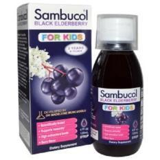 Sambucol Black Elderberry Immune System Support For Kids Syrup 4 Fl Oz 120 Ml Coupon