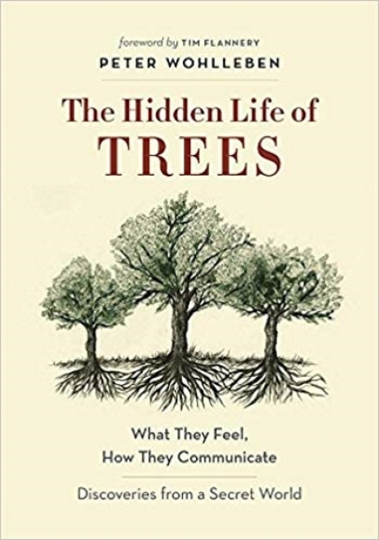The Hidden Life of Trees: What They Feel, How They Communicate  (Hardcover)