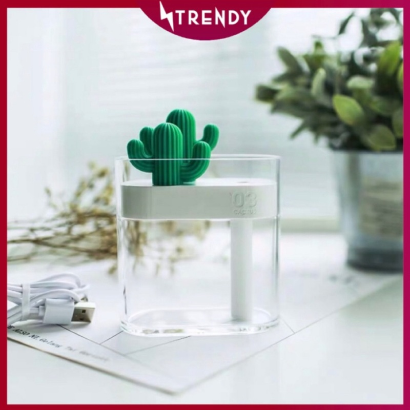 Cactus Air Purifier Modern and Stylish Office Living Nordic Humidifier Singapore