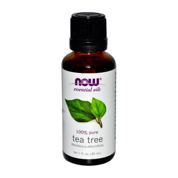 Buy Now Foods Essential Oils Tea Tree 1 fl oz (30 ML) Singapore
