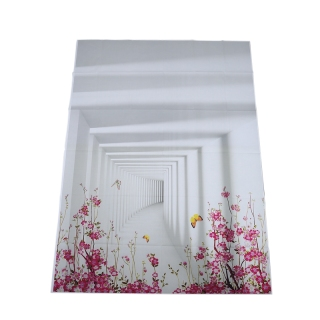 5x7FT White Backdrop Board Photo Background Photography White Studio Cloth Flower Rattan Corridor thumbnail