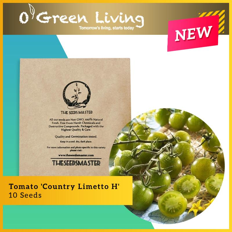 S191 Tomato Country Limetto H (10 Seeds) - OGL