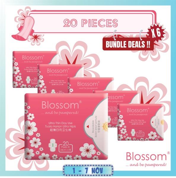 Buy Blossom Sanitary Napkin Ultra Thin Wing Day 20's 24cm carton of 6 Singapore
