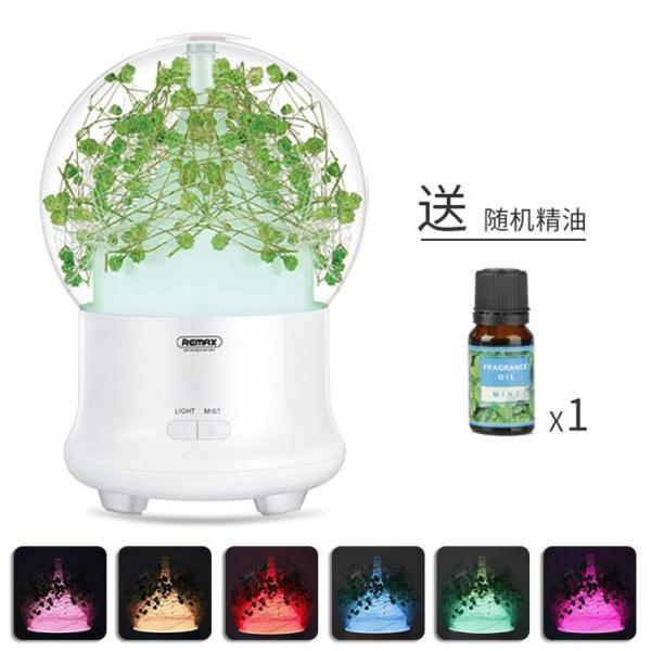 Remax Aromatherapy Humidifier Household Mute Bedroom Small Pregnant Women Infant Purification Air Fragrance Lamp Essential Oil Ultrasonic Spray Water Air Purifier Cute Mites Sterilization Gift preserved Fresh Flower Singapore