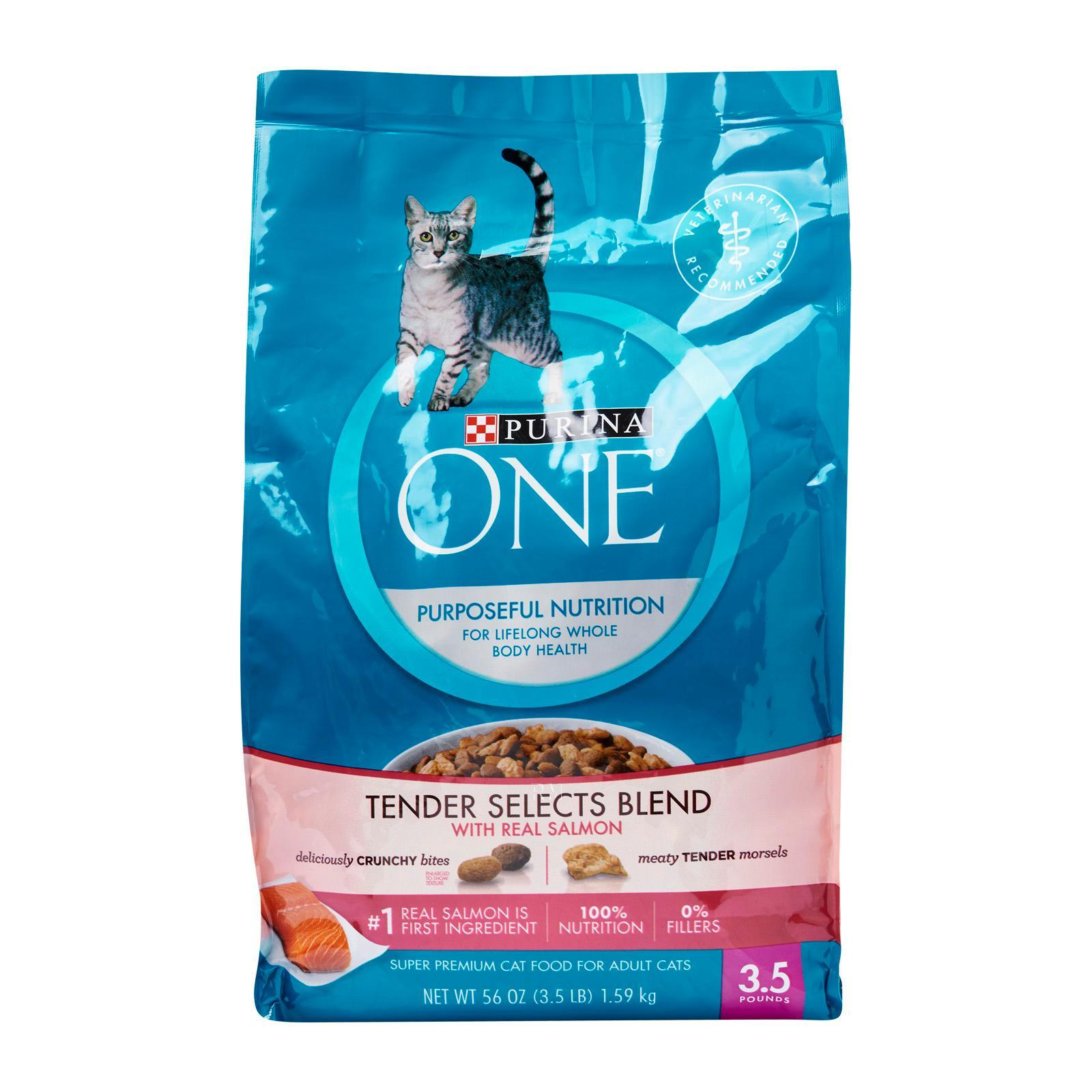 Purina ONE Cat Salmon Tuna Dry Cat Food