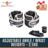 Compare Price 2 5Kg Adjustable Neoprene Wrist Ankle Weights 2 5Kg On Singapore