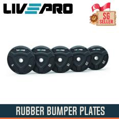 25kg Rubber Bumper Plates By Singapore Fitness.