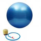 Low Price 55Cm High Quality Gym Fitness Ball Anti Burst Yoga Exercise Ball W Pump Blue
