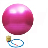 55Cm High Quality Gym Fitness Ball Anti Burst Yoga Exercise Ball W Pump Pink Cheap