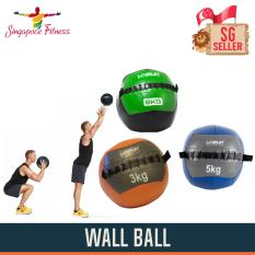 8kg Wall Ball By Singapore Fitness.