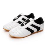 Cheaper Gum Outsole Summer Mesh Breathable Road Shoes Taekwondo Shoes