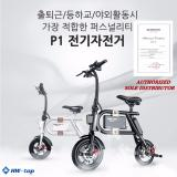 Inmotion P1D Authorized Sole Distributor Electric Scooter Ebike Online