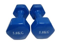 Sale Mini Vinyl Dumbbells 5Kg Blue Sold In Pair Online Singapore