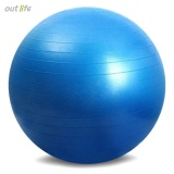 Price Outlife 65Cm Pvc Exercise Gym Yoga Ball For Fitness Training Intl Oem