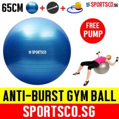 Sportsco 65Cm Anti Burst Yoga Gym Ball With Free Pump Sg Sale