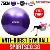 Sportsco 75Cm Anti Burst Yoga Gym Ball With Free Pump Sg Sportsco Discount