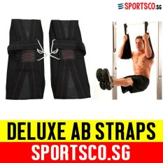 Compare Price Sportsco Deluxe Ab Straps Ab Sling Sold In Pair Sg On Singapore