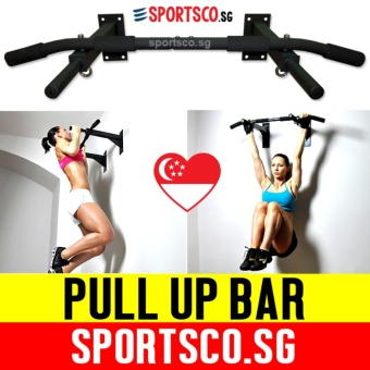 Pull-Up & Push-Up Bars