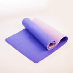 Tpe Yoga Mat 6Mm Double Color Intl Coupon