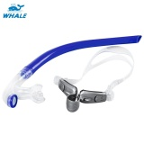 Whale Diving Swimming Tube Center Snorkel Intl Shop
