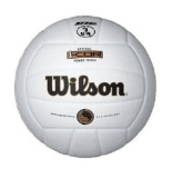 Sale Wilson I Cor Power Touch Indoor Volleyball White Intl Wilson Cheap