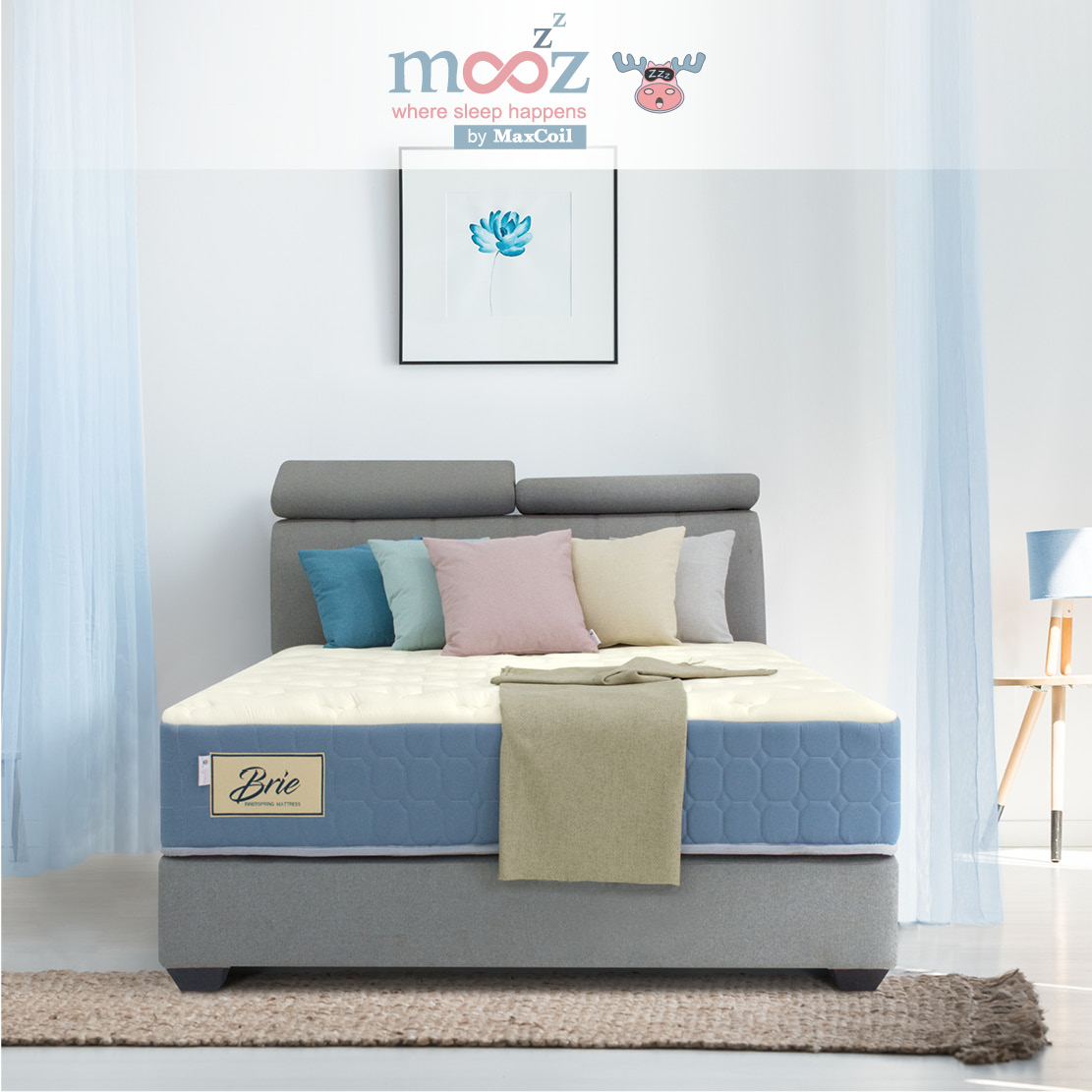 mooZzz Brie 11inch Bonnell Spring Mattress | Available in Single, Super Single, Queen and King