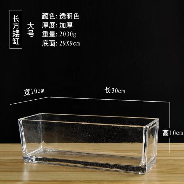 Multi-functional Rectangular Transparent Glass Flowerpot Rectangular Cylinder S-Shaped Hydroponic Plants Flowerpot Micro-View Fish Tank Container