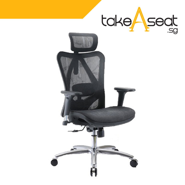 [Pre-Order] M19 Office Chair (Self Setup) ★ Executive Office Chair ★ Mesh Chair ★ Adjustable Lumbar Support ★ Home/Office Use (Ships After 22 Sep) Singapore