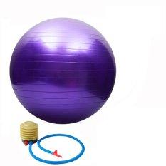 65Cm High Quality Gym Fitness Ball Anti Burst Yoga Exercise Ball W Pump Purple Thinch Cheap On Hong Kong Sar China