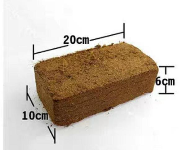 [SG Seller] Coconut Peat Brick Compressed Soil Replacement Soil Substitute (Immediate Stock)