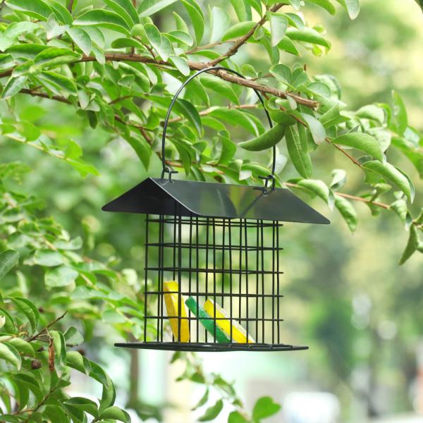 Hộp Đựng Suet Treo DOULI, Phong Cách Cho Bánh Suet Đơn Bên Ngoài Mỡ Bird Feeder Dụng Cụ Cho Chim Hoang Dã Treo Ngoài Trời Nhỏ Màu Đen Với Kim Loại