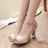 Compare Price 2017 New Women S Heeled Sandals Flowers Printed Ankle Straps Block Heels High Heels Summer Peep Toe Color Pink Intl On China