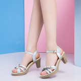 Sales Price Korean Style Heeled Women S Open Toed Summer Women Shoes Women S Sandals 086 Sky Blue
