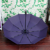 Automatic Open Close Foldable Rain Umbrella Easy Carrying Totes Purple Sale