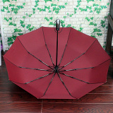 Automatic Open Close Foldable Rain Umbrella Easy Carrying Totes Red Review