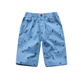 Boys Shorts Summer New Style Outer Wear Big Virgin Boy Loose Cotton Sky Blue Color China