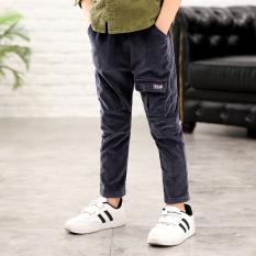 Sale New Style Baby Corduroy Pants Gray Oem Branded
