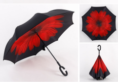 Double Layer Take Hands Free Reverse Umbrella Red Daisy Red Daisy In Stock