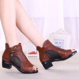Soft Bottom Spring And Summer Semi High Heeled Hollow Network Boots Brown On China