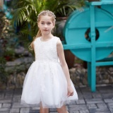 Compare Fashion White Lace Tulle Dress Wedding Flower G*rl Dresses Kids Summer Chiffon Dresses Baby Christening Clothes Intl